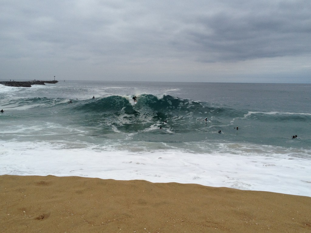 wedge surf report